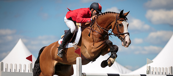 A horse jumping event with a rider protected by equestrian insurance
